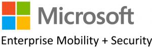 microsoft_ems_logo